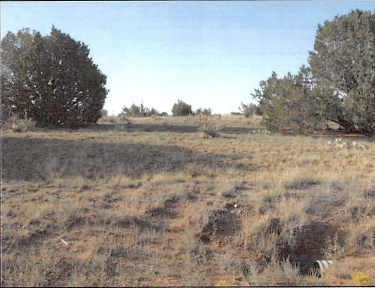 0 Angelina Court Property Photo - Moriarty, NM real estate listing