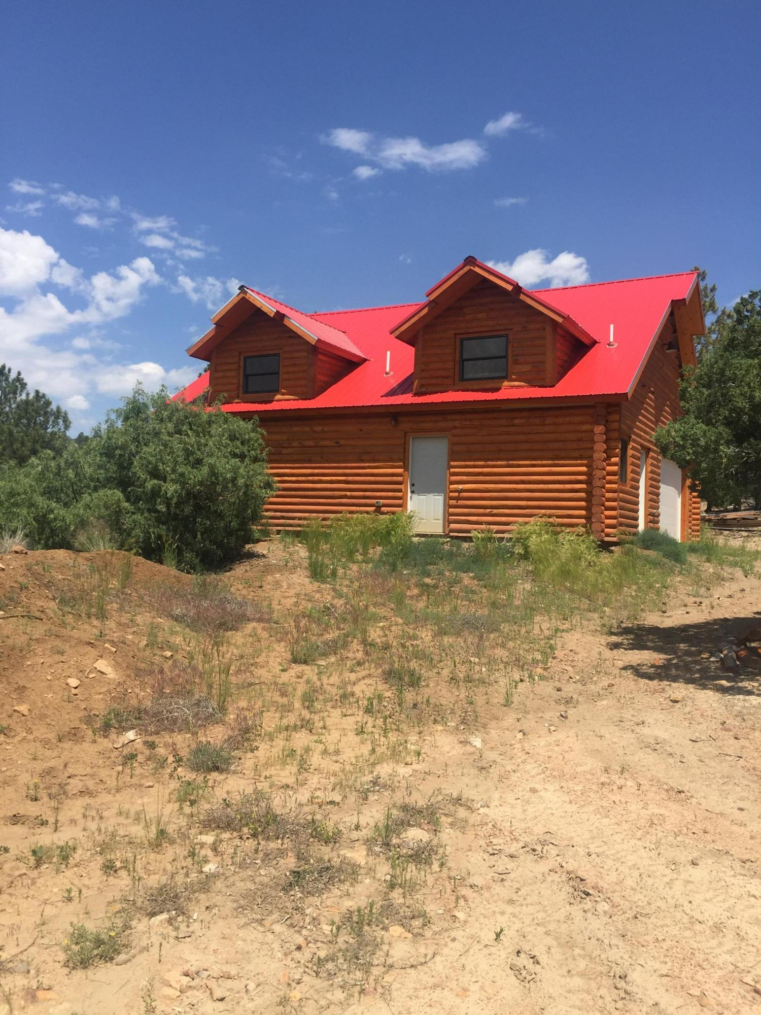437 Shroyer Drive Property Photo - Los Ojos, NM real estate listing