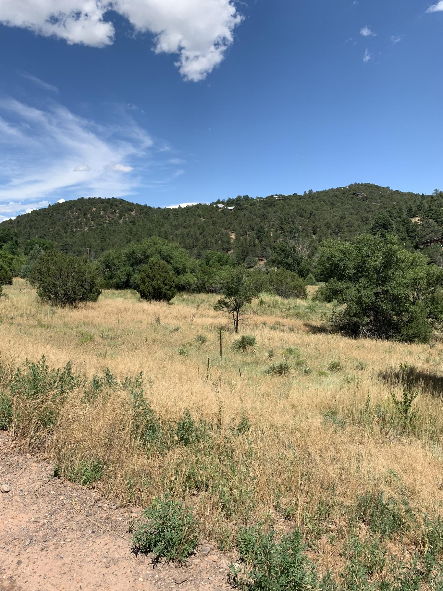 North 14 Property Photo - Cedar Crest, NM real estate listing