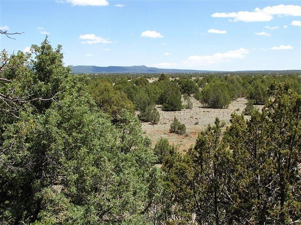 62 North Valley Road Property Photo - Grants, NM real estate listing
