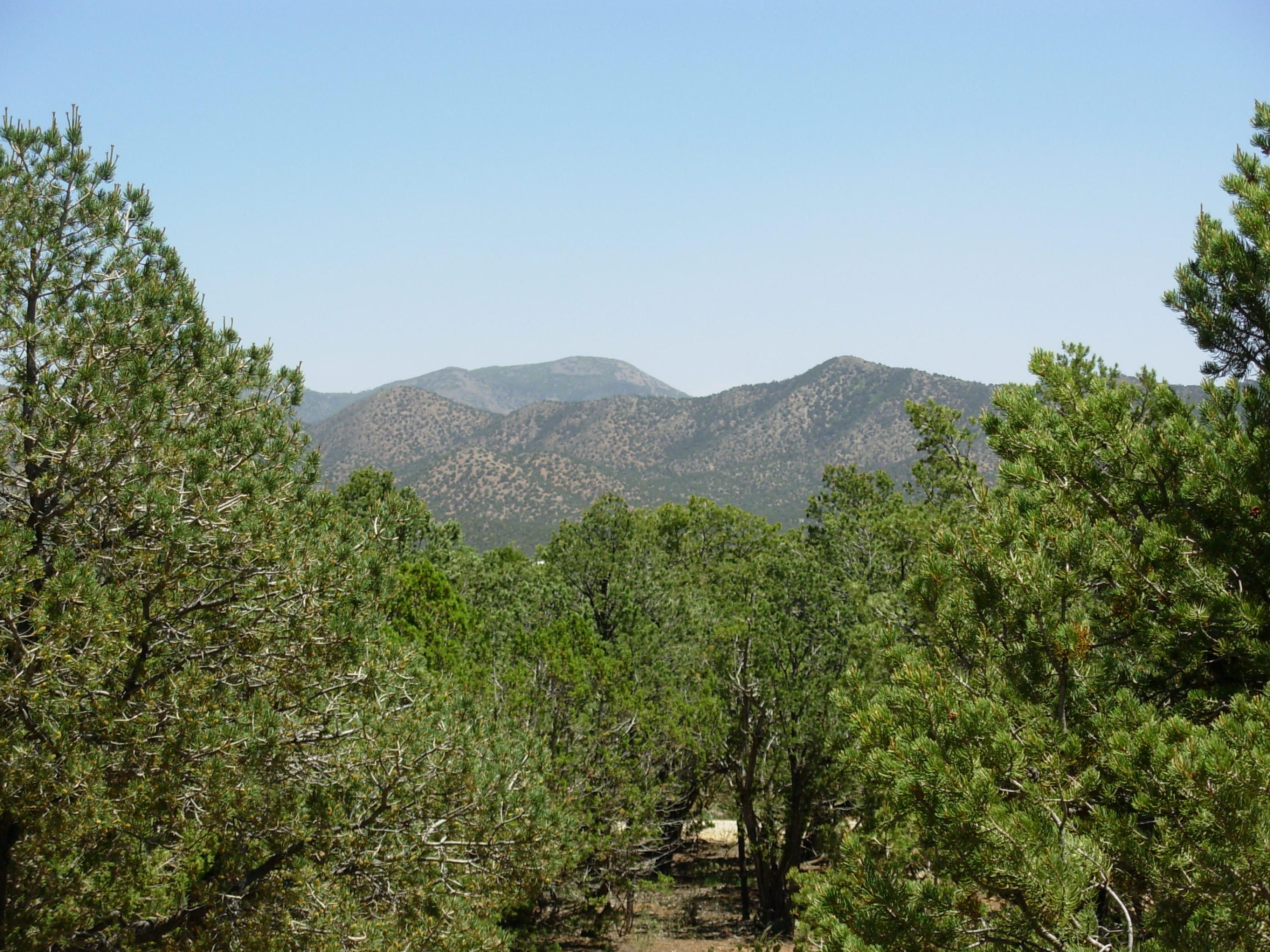 55 Canyon Ridge Drive Property Photo - Sandia Park, NM real estate listing