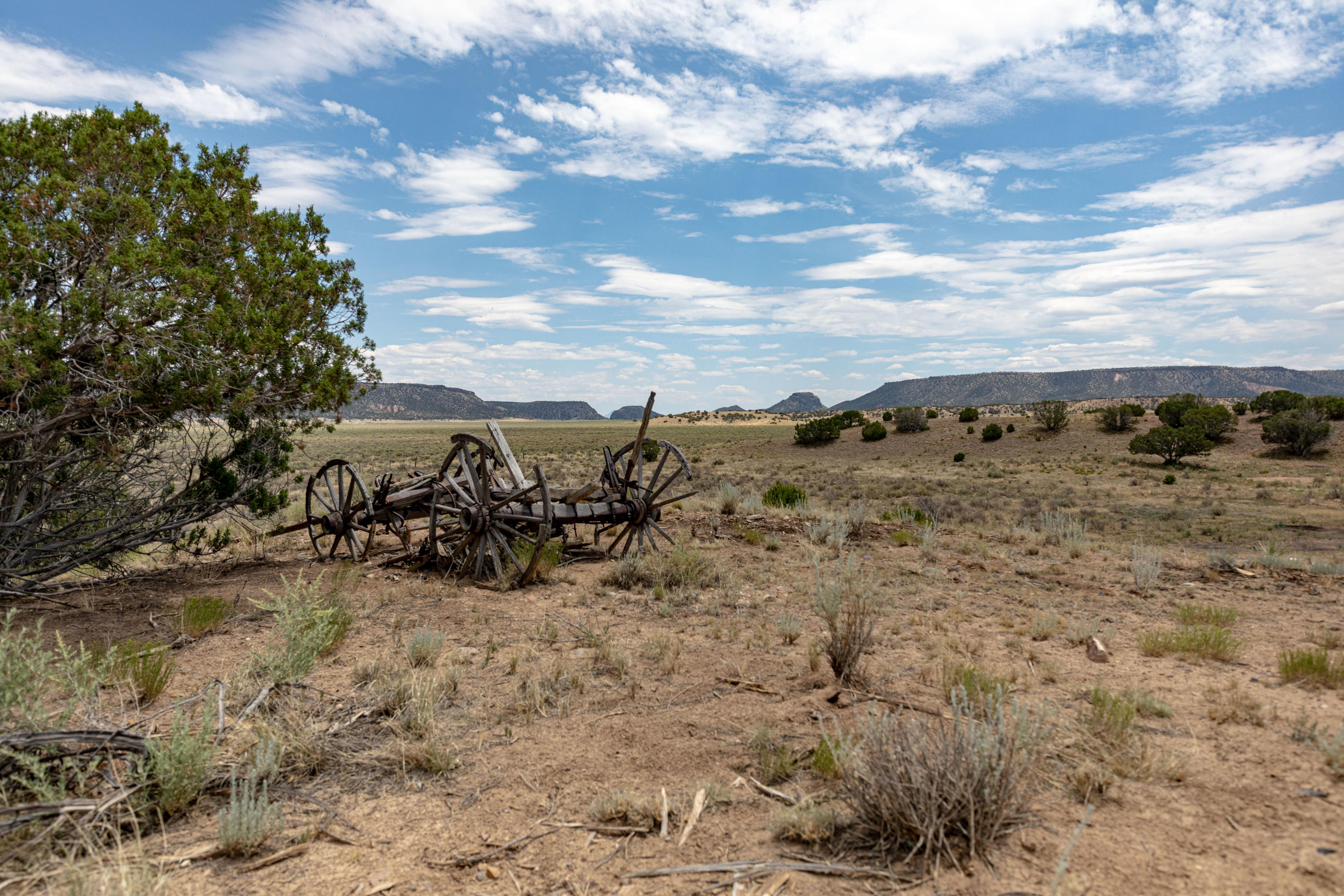Orona Road Property Photo - Quemado, NM real estate listing
