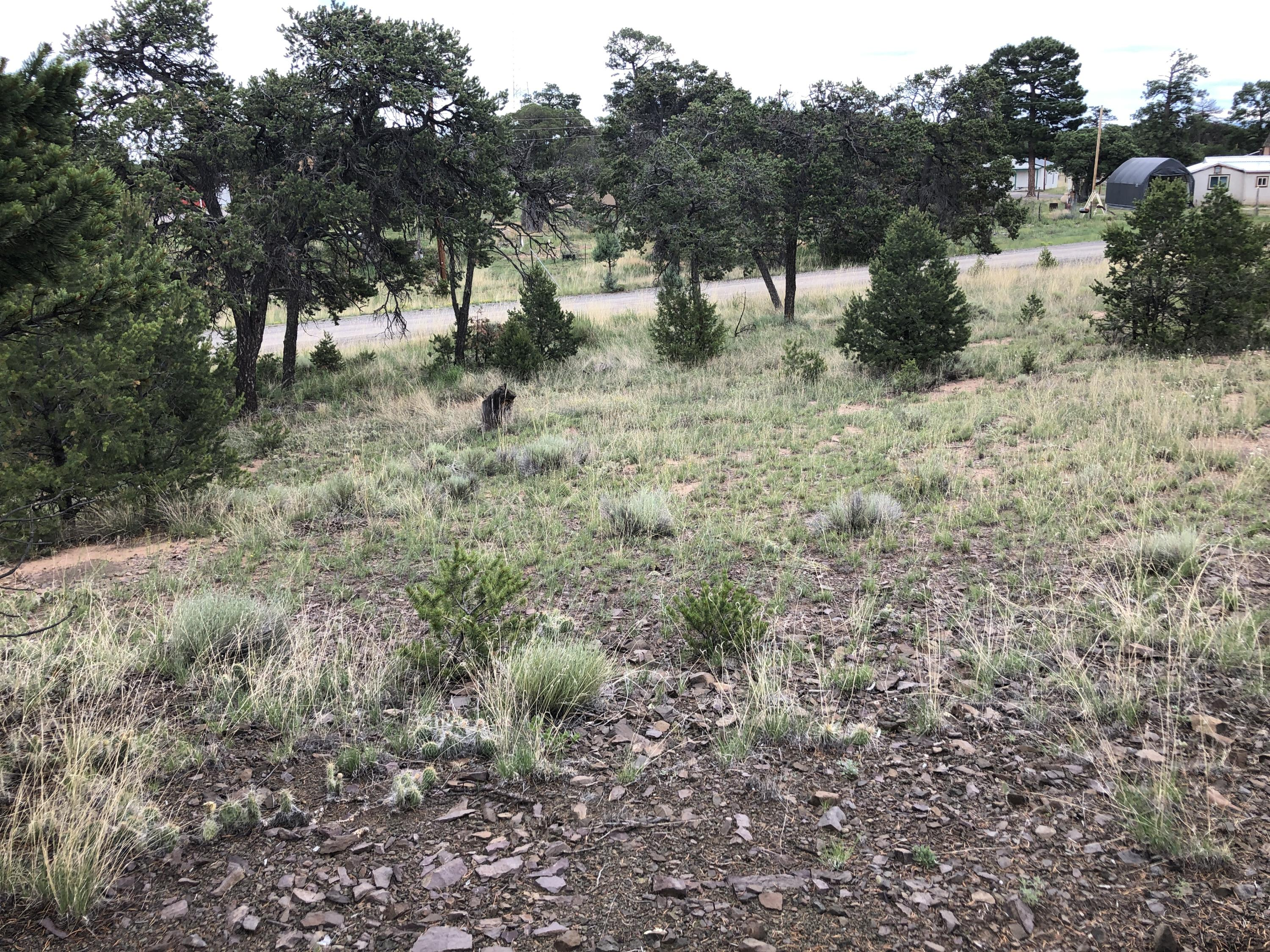 Tract 3-A Horse Springs Road, Pie Town, NM 87827 - Pie Town, NM real estate listing