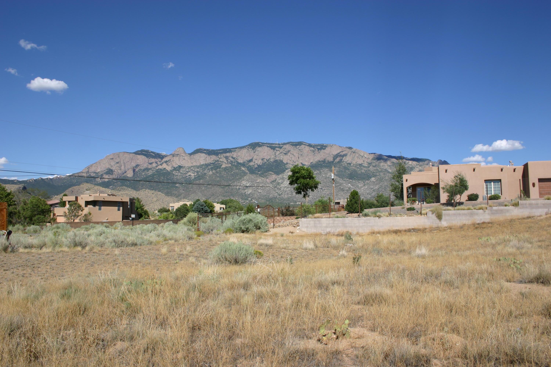 9900 Elena Drive NE Property Photo - Albuquerque, NM real estate listing