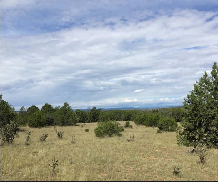 0 Duran Lane Property Photo - Santa Rosa, NM real estate listing