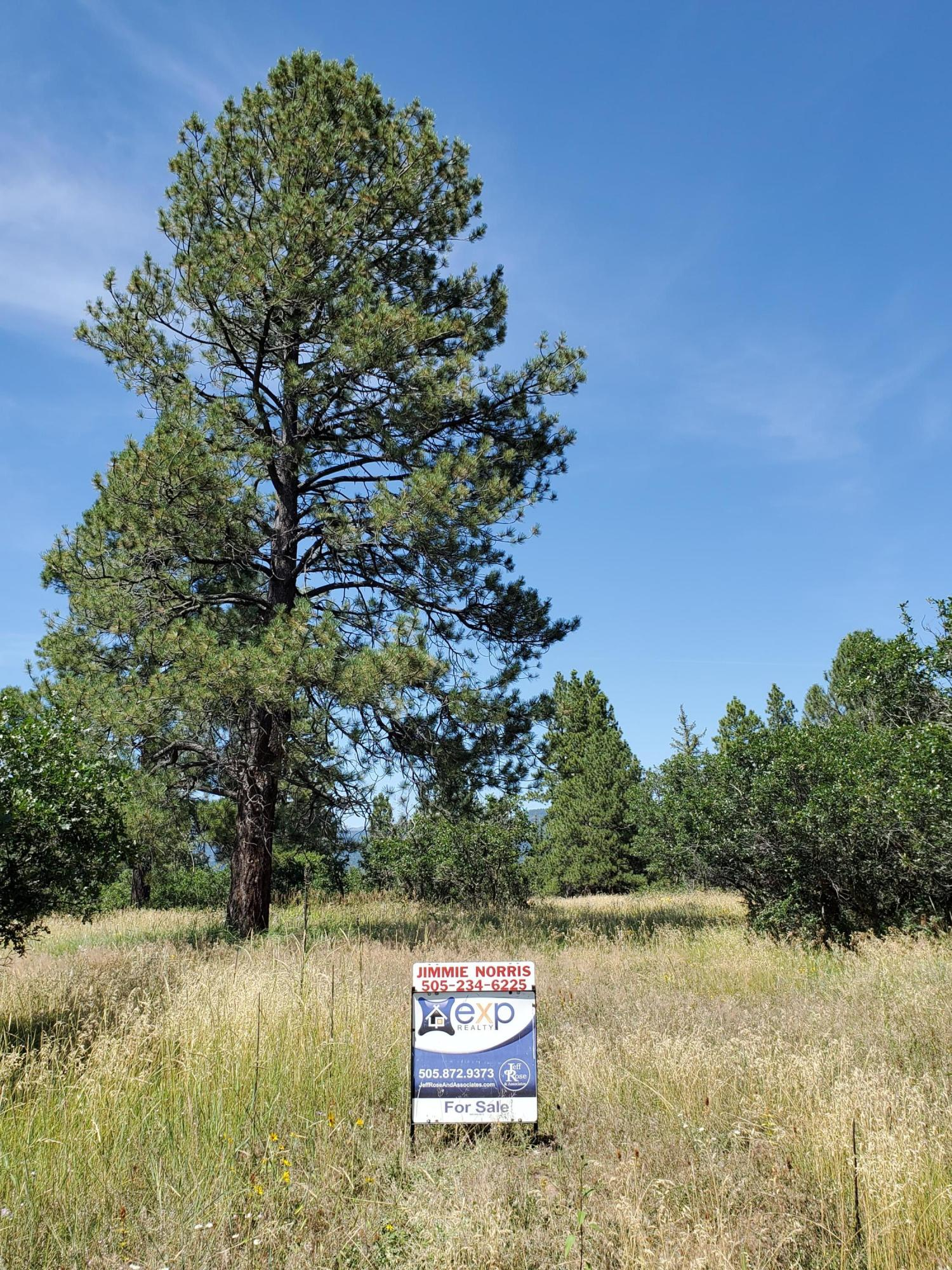 Indian Paintbrush Dr, Chama, NM 87520 - Chama, NM real estate listing