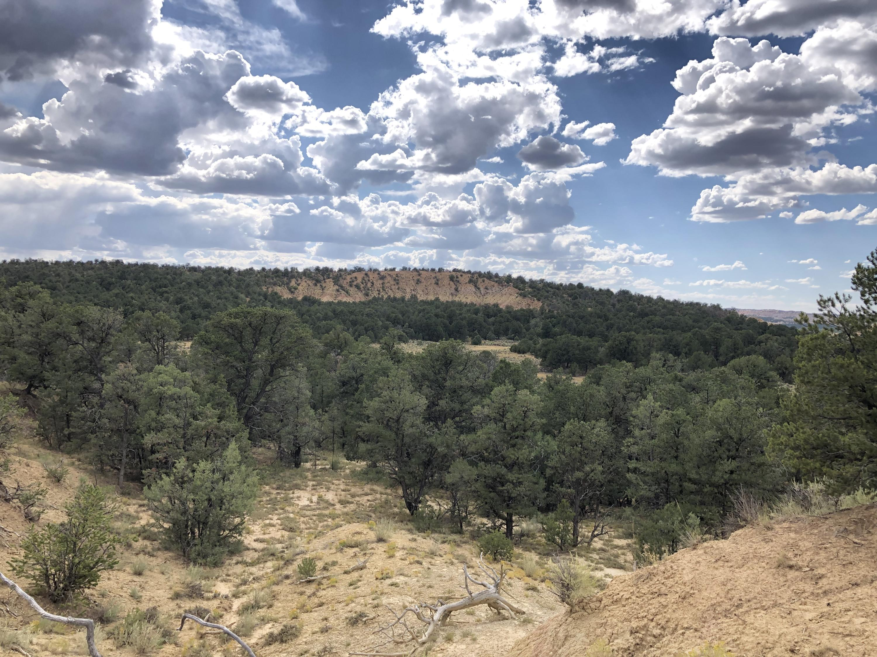XX Old Hwy 95 Road, Regina, NM 87046 - Regina, NM real estate listing