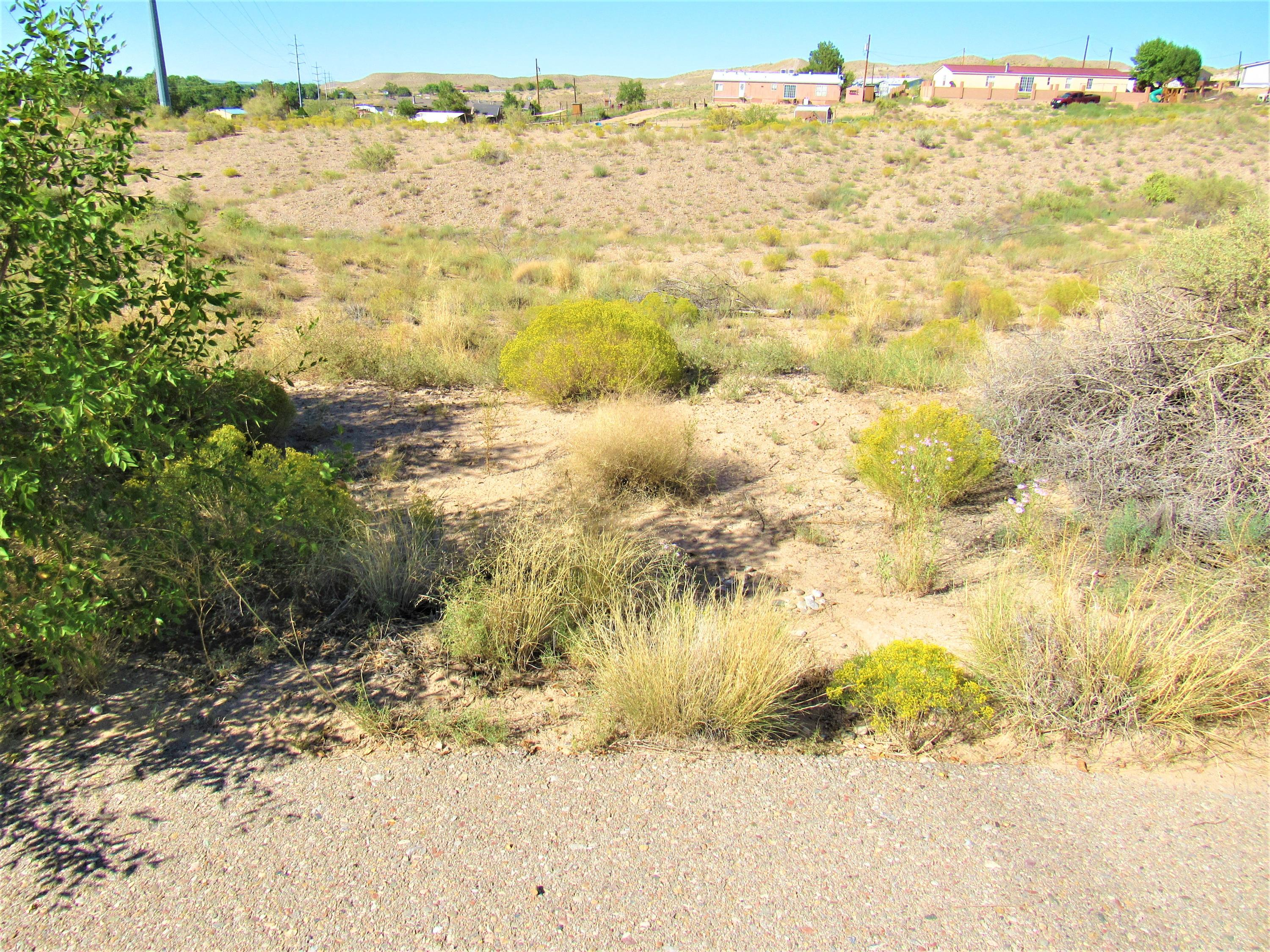 9 Loma Cordorniz Property Photo - Peralta, NM real estate listing