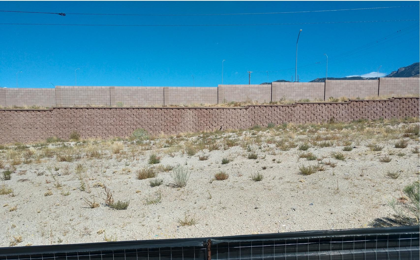 13615 Covered Wagon Avenue SE Property Photo - Albuquerque, NM real estate listing