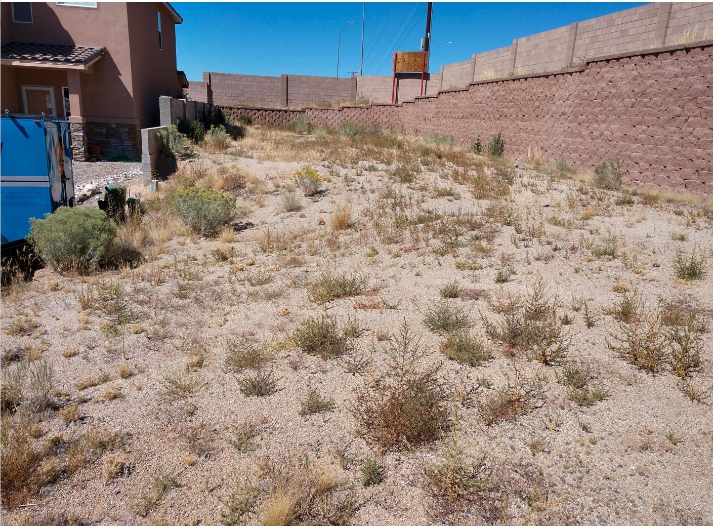 101 Lanier Drive SE Property Photo - Albuquerque, NM real estate listing