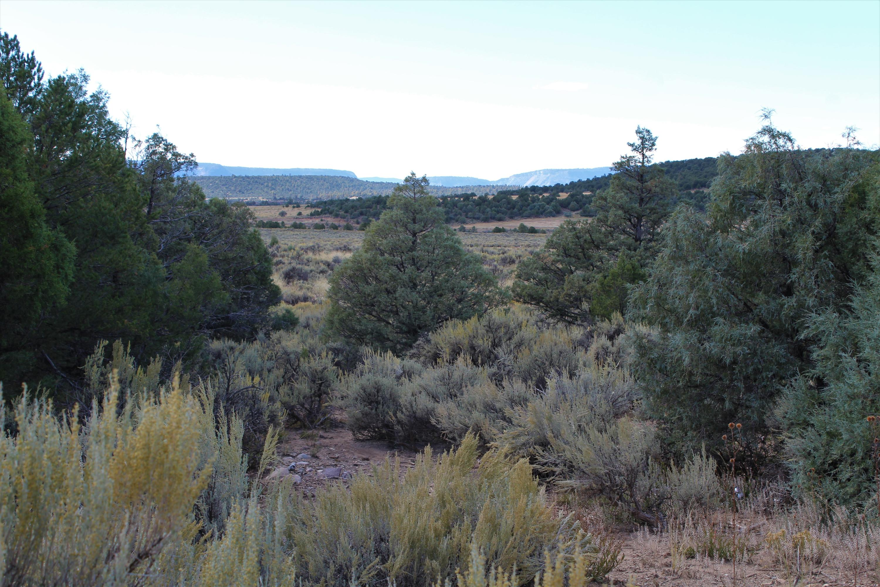 Talavera Lot 1-B2, Tierra Amarilla, NM 87575 - Tierra Amarilla, NM real estate listing