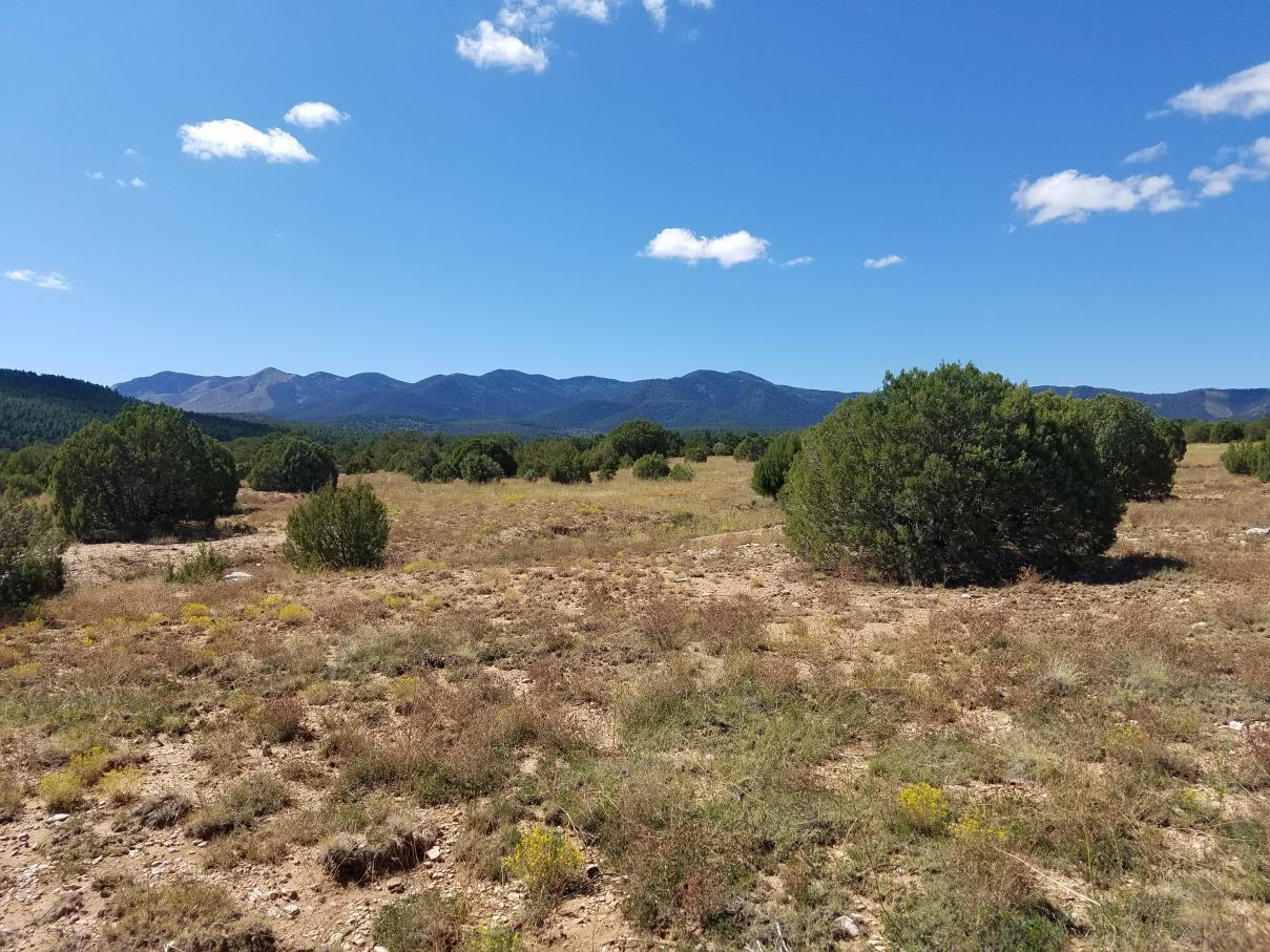 Lot 15&17 Hwy 131 Property Photo - Manzano, NM real estate listing