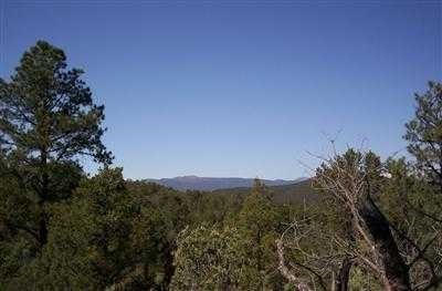 60 JUAN TOMAS Road Property Photo - Tijeras, NM real estate listing