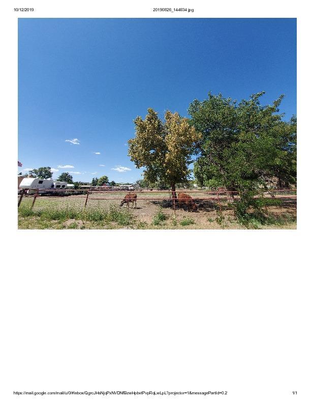 2725 DELLA Road SW Property Photo - Albuquerque, NM real estate listing