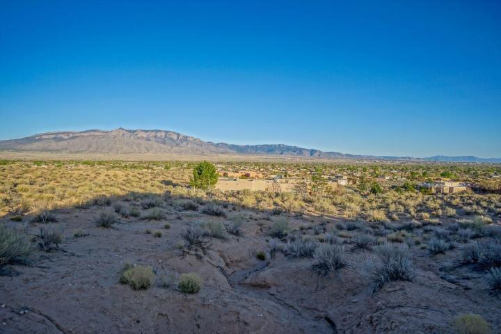 953 CAMINO SIN PASADA Road Property Photo - Corrales, NM real estate listing