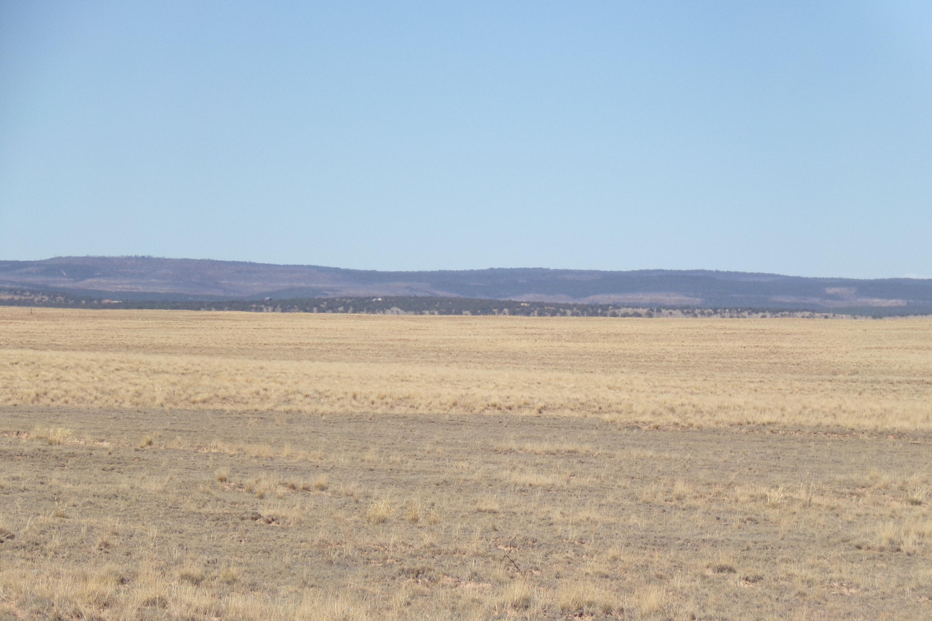 Myers Road Property Photo - Estancia, NM real estate listing