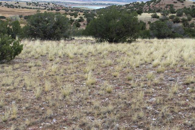 TBD Tract A, PVT DRIVE 1725 Property Photo - Abiquiu, NM real estate listing