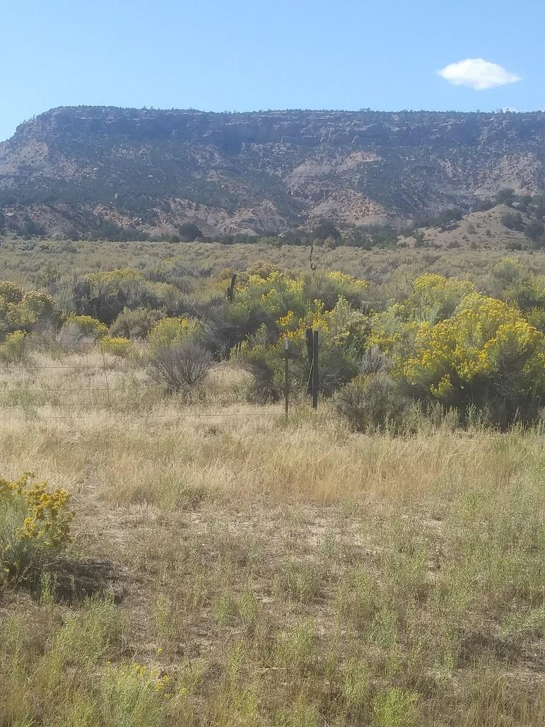 243 NM Highway 197 Road Property Photo - Cuba, NM real estate listing