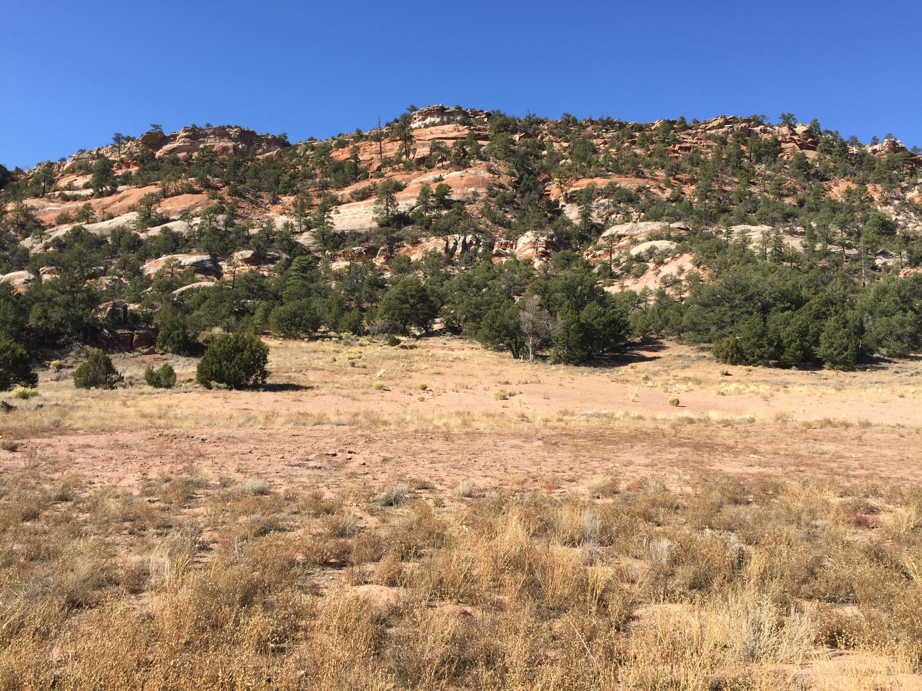Lot 4 Box S Ranch Road Property Photo - Ramah, NM real estate listing