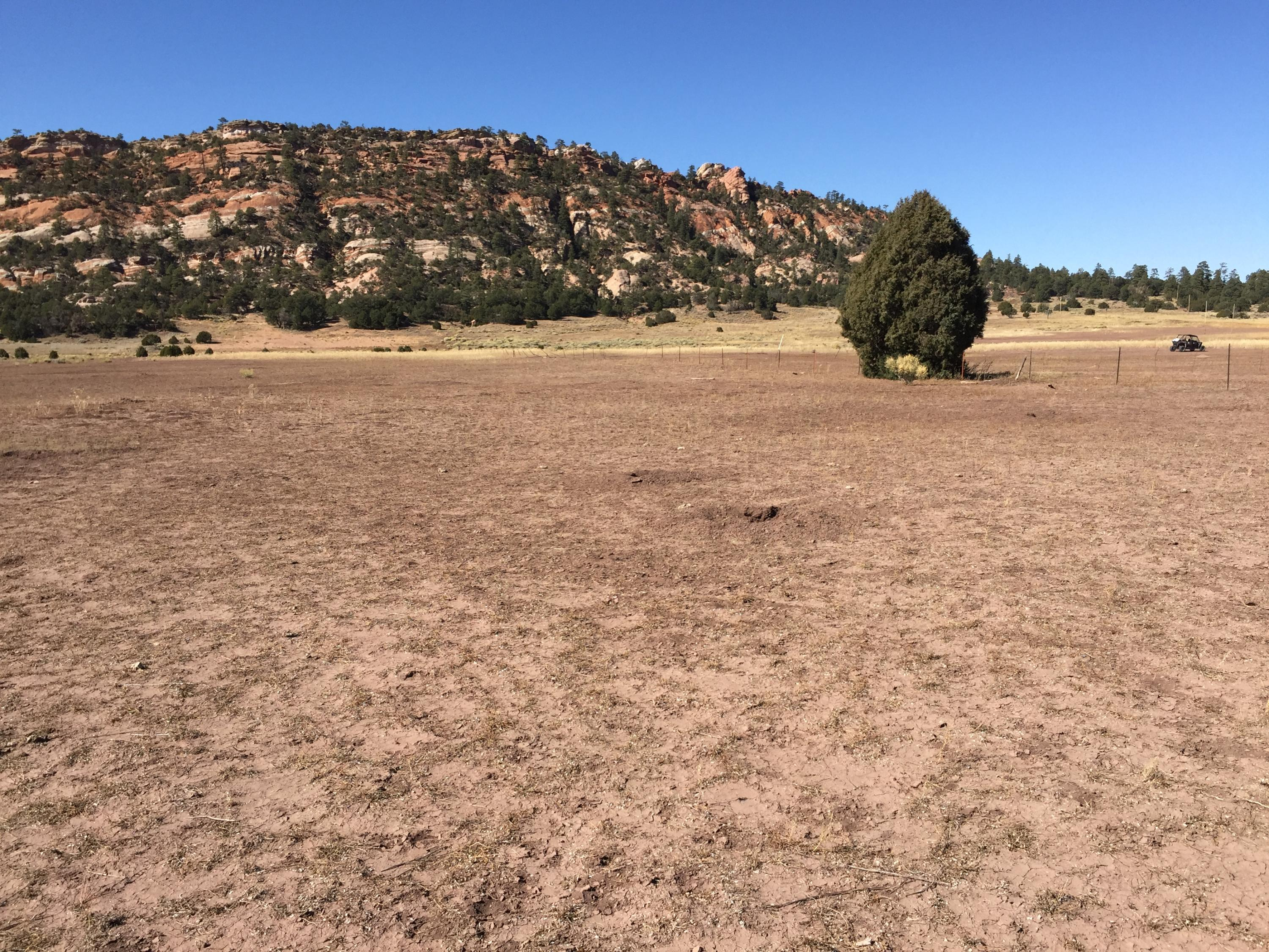 Lot 11 Box S Ranch Road Property Photo - Ramah, NM real estate listing