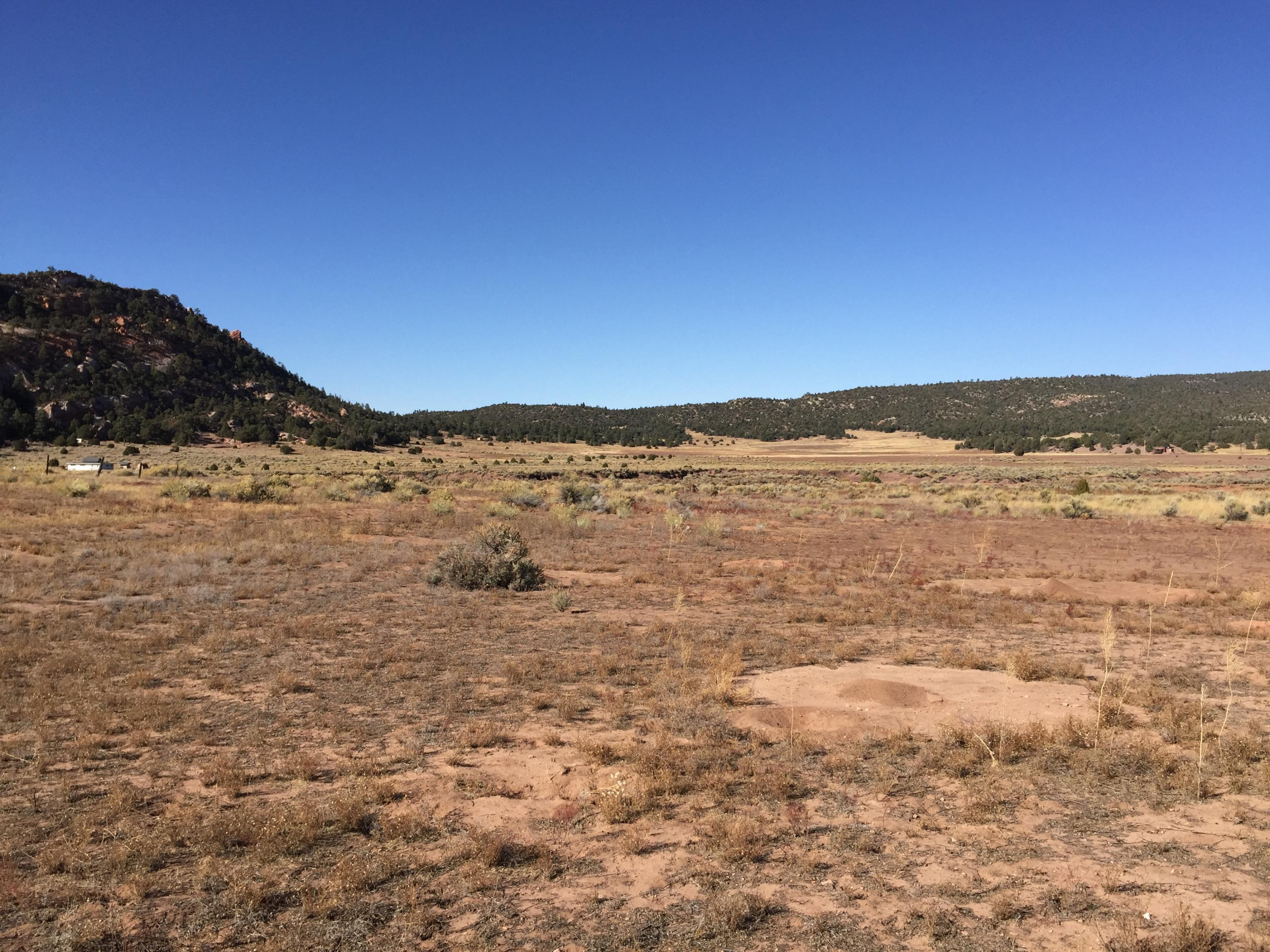 Lot 5 Box S Ranch Road Property Photo - Ramah, NM real estate listing