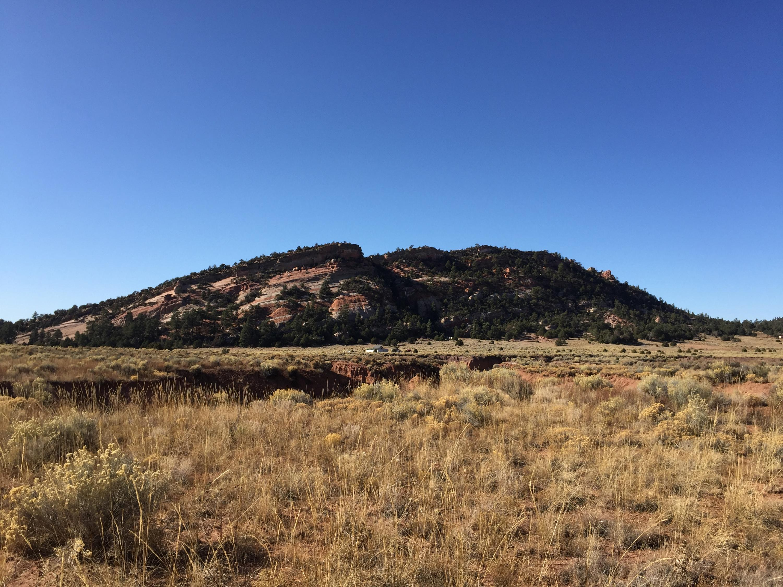 Lot 6 Box S Ranch Road Property Photo - Ramah, NM real estate listing