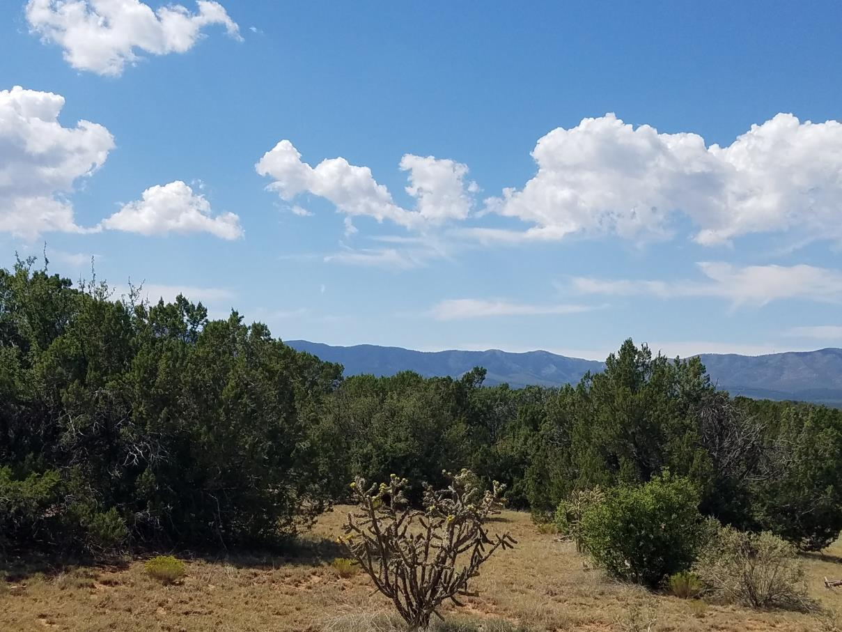 Punta de Agua Property Photo - Manzano, NM real estate listing