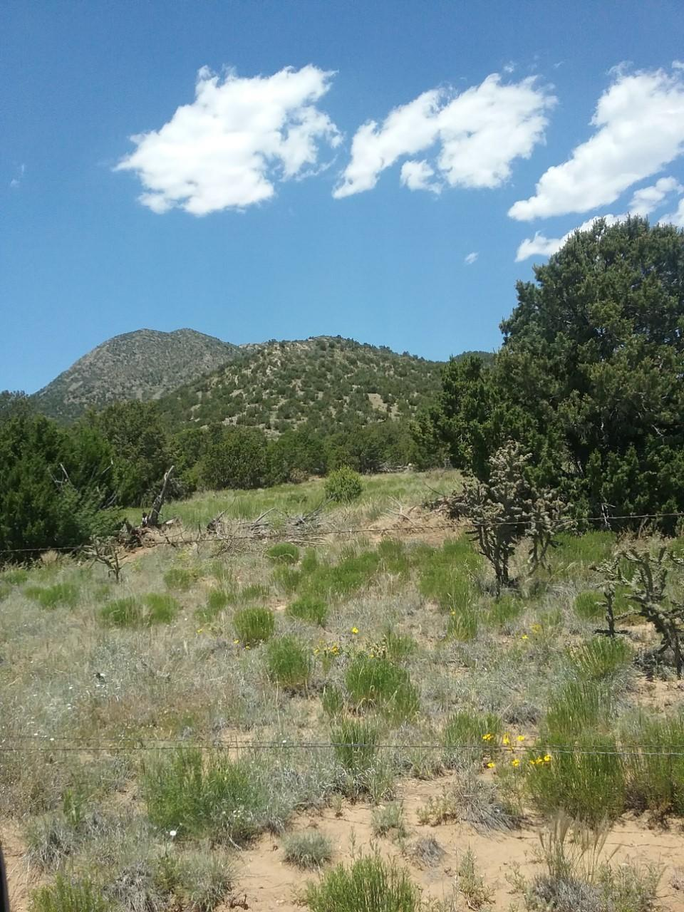 211 Cow Mill Road Property Photo - Stanley, NM real estate listing