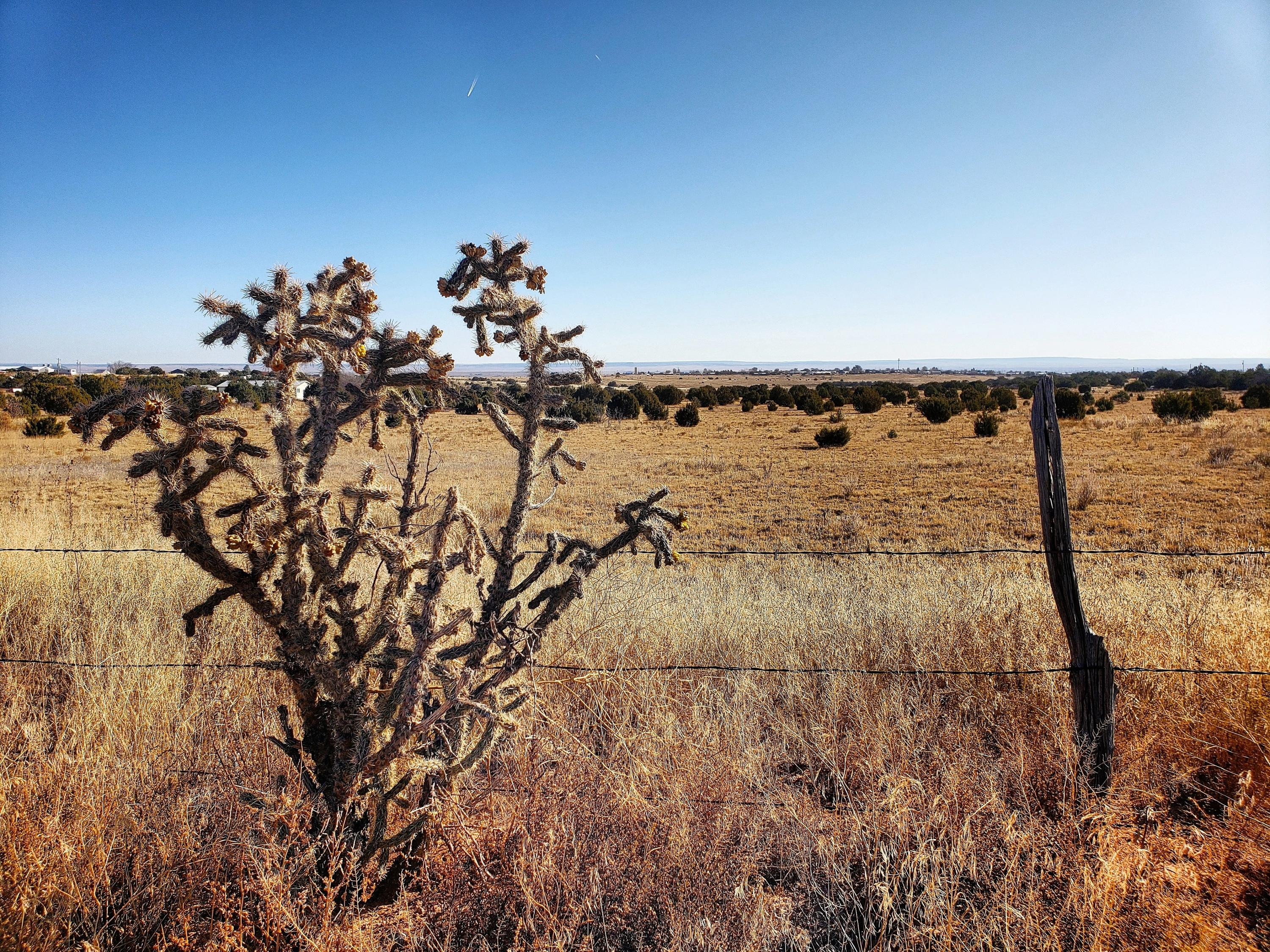 V Hill Road Property Photo - Moriarty, NM real estate listing
