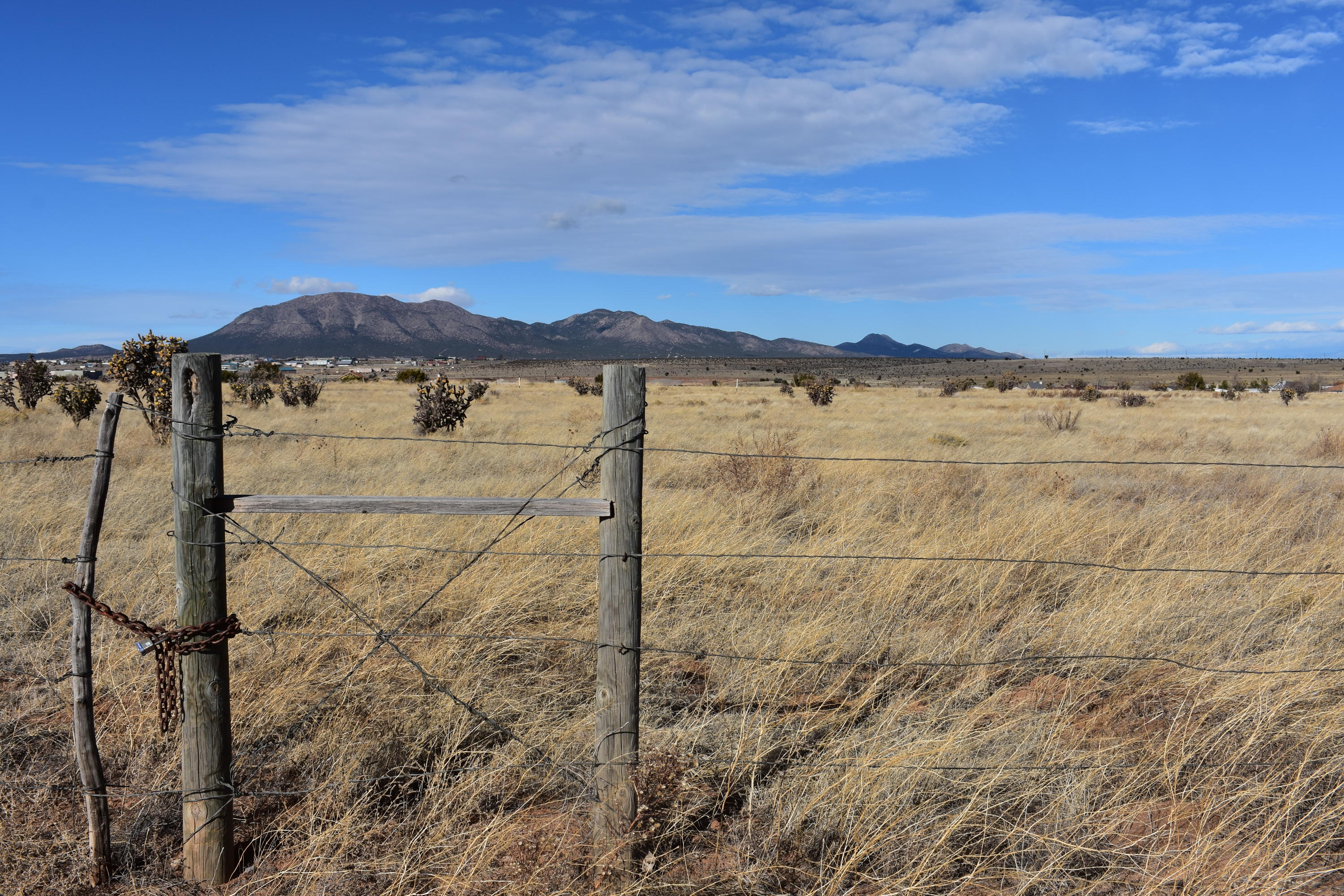 Dinkle Road Property Photo - Edgewood, NM real estate listing