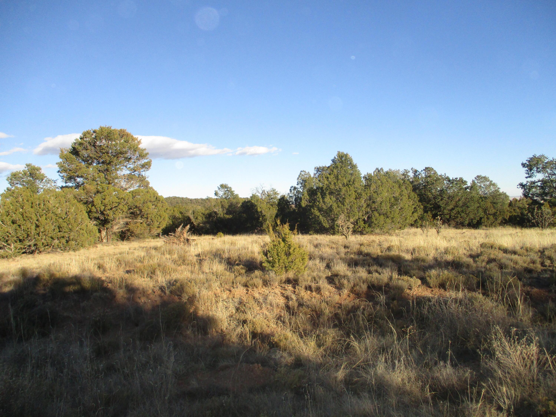 Lot 8 Block 1 Woodland Hills Property Photo