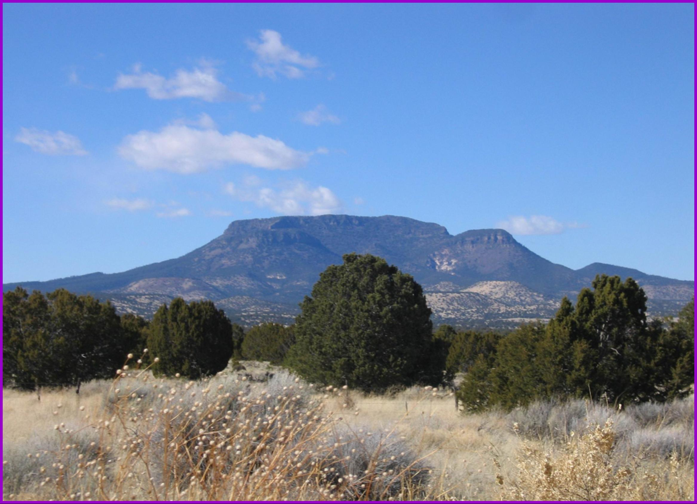 62 Tee Pee Trail Property Photo - Datil, NM real estate listing