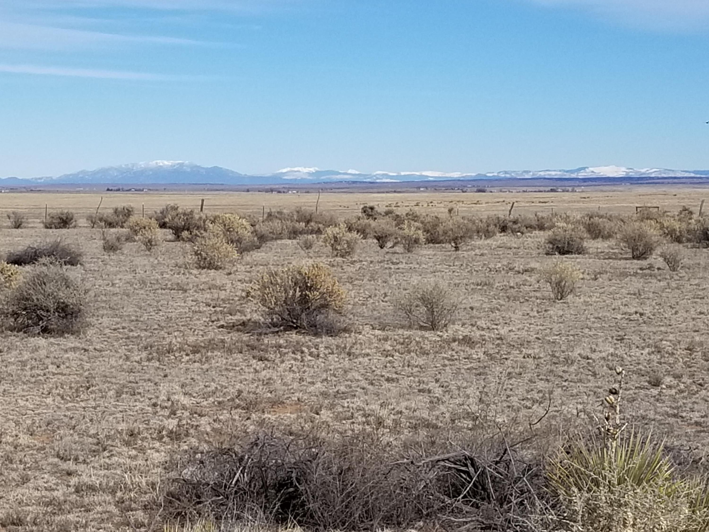 42 Shiloh Road Property Photo - Moriarty, NM real estate listing