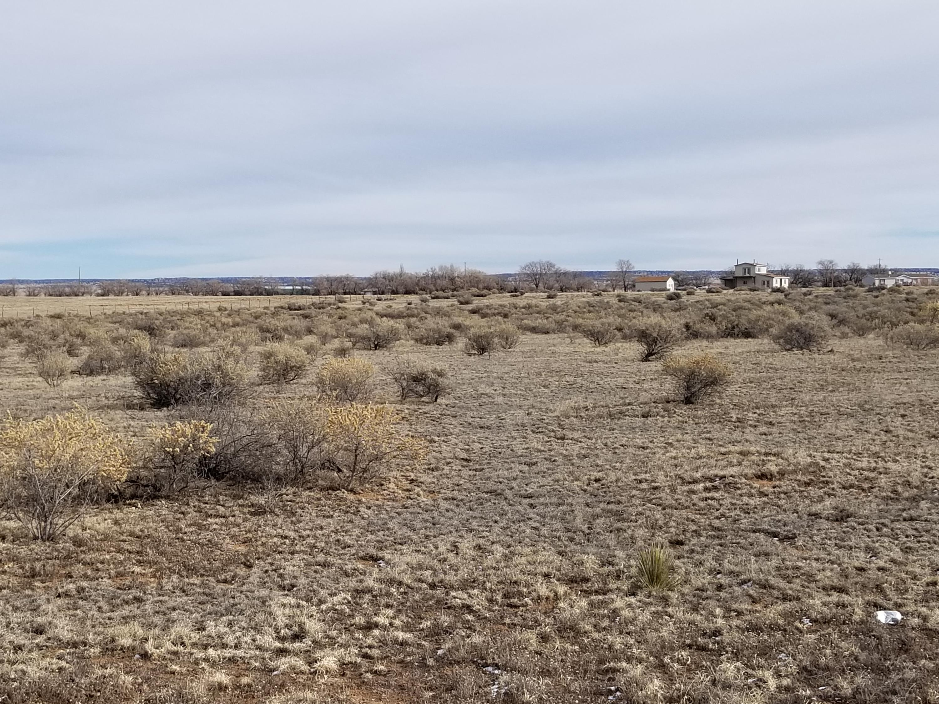 46 Shiloh Road Property Photo - Moriarty, NM real estate listing