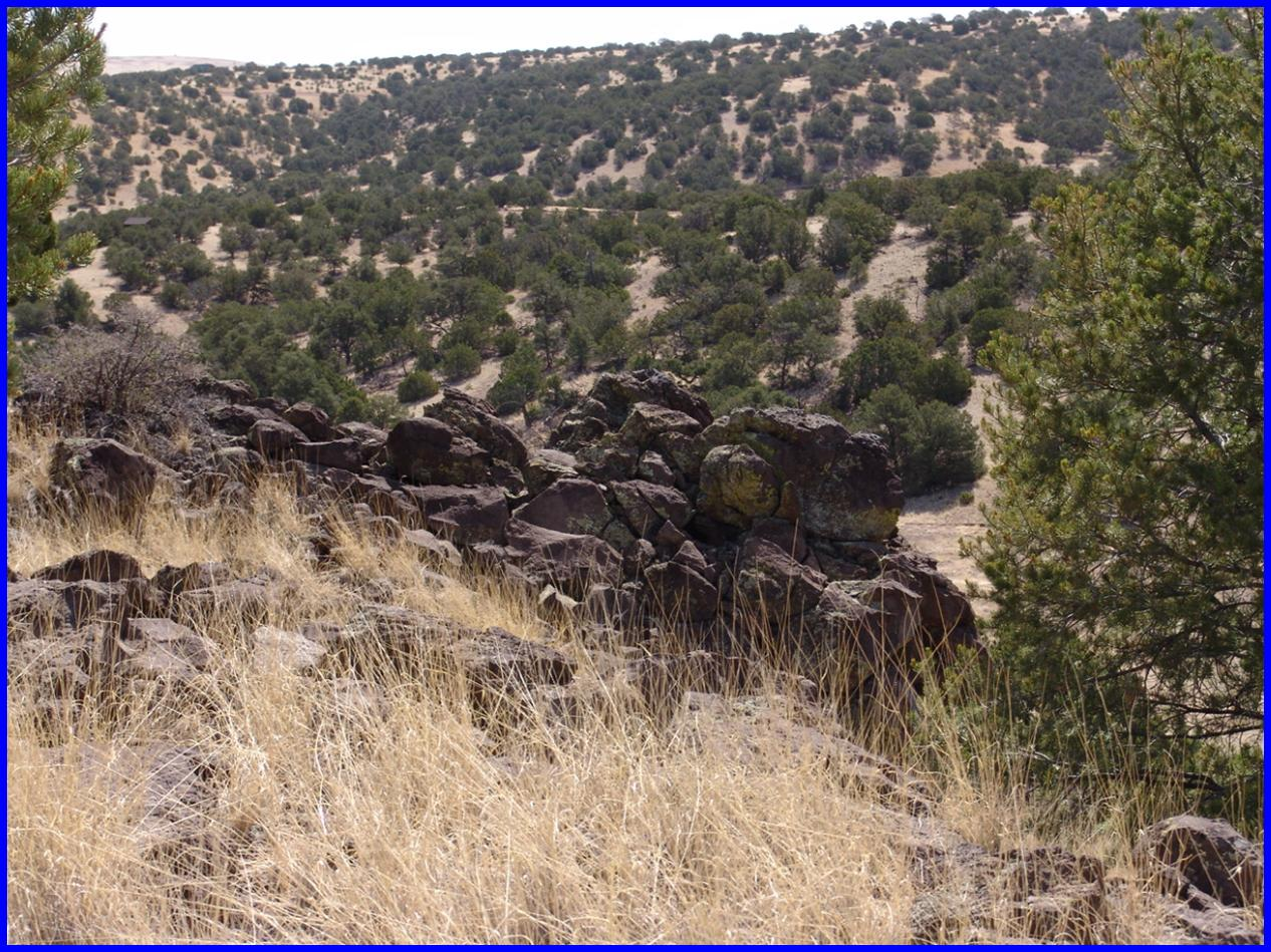 51 Cowboy Pass Property Photo - Quemado, NM real estate listing