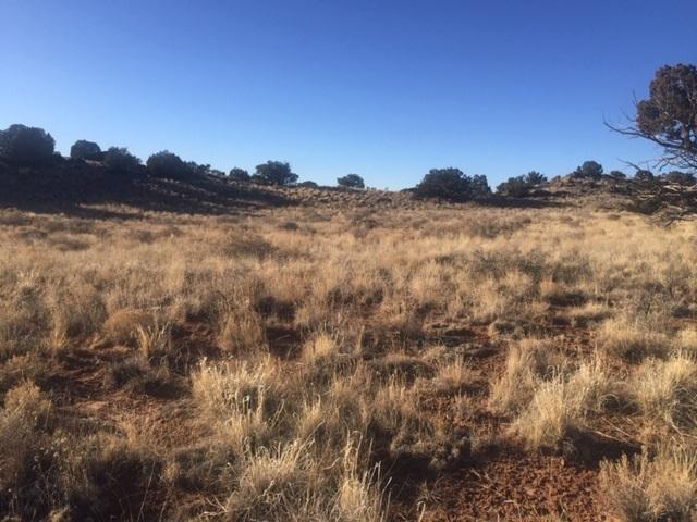 67 ENCHANTED MESA Trail, Grants, NM 87020 - Grants, NM real estate listing