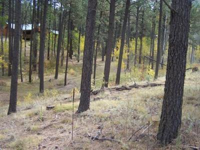 0 Los Griegos Road Property Photo - Jemez Springs, NM real estate listing