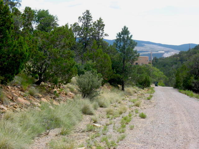 Vista del Cielo Place Property Photo - Cedar Crest, NM real estate listing