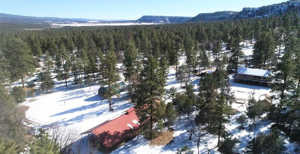 55 Aspen Loop Property Photo - Ramah, NM real estate listing