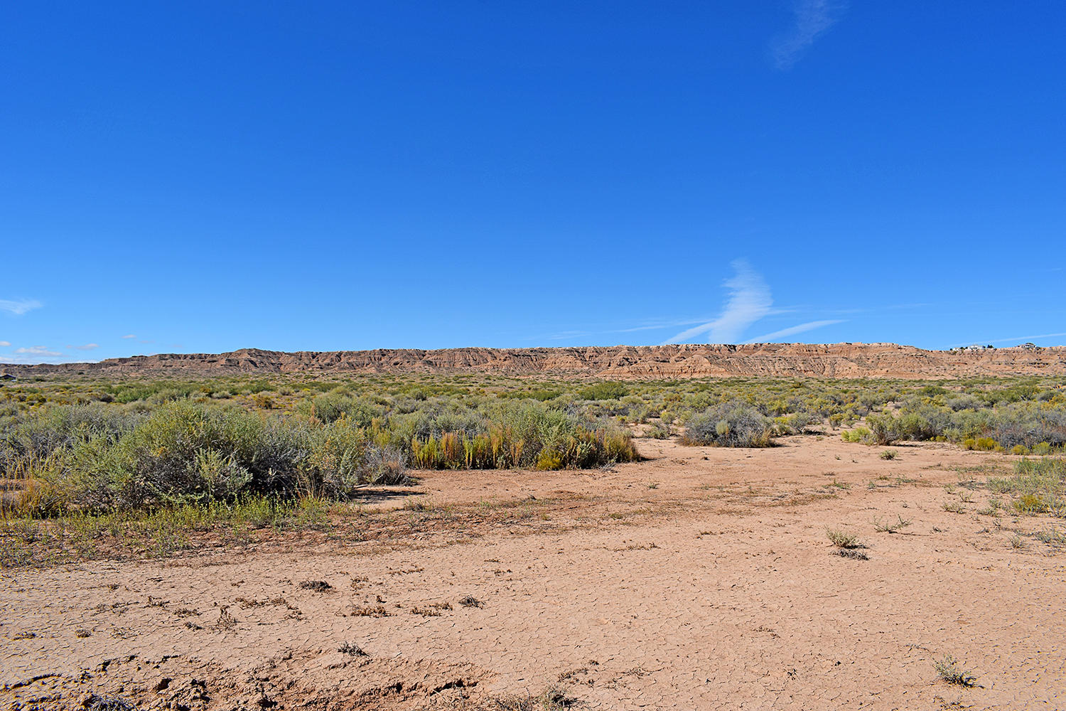 Tr 164D2 W Frontage Road Property Photo - Belen, NM real estate listing