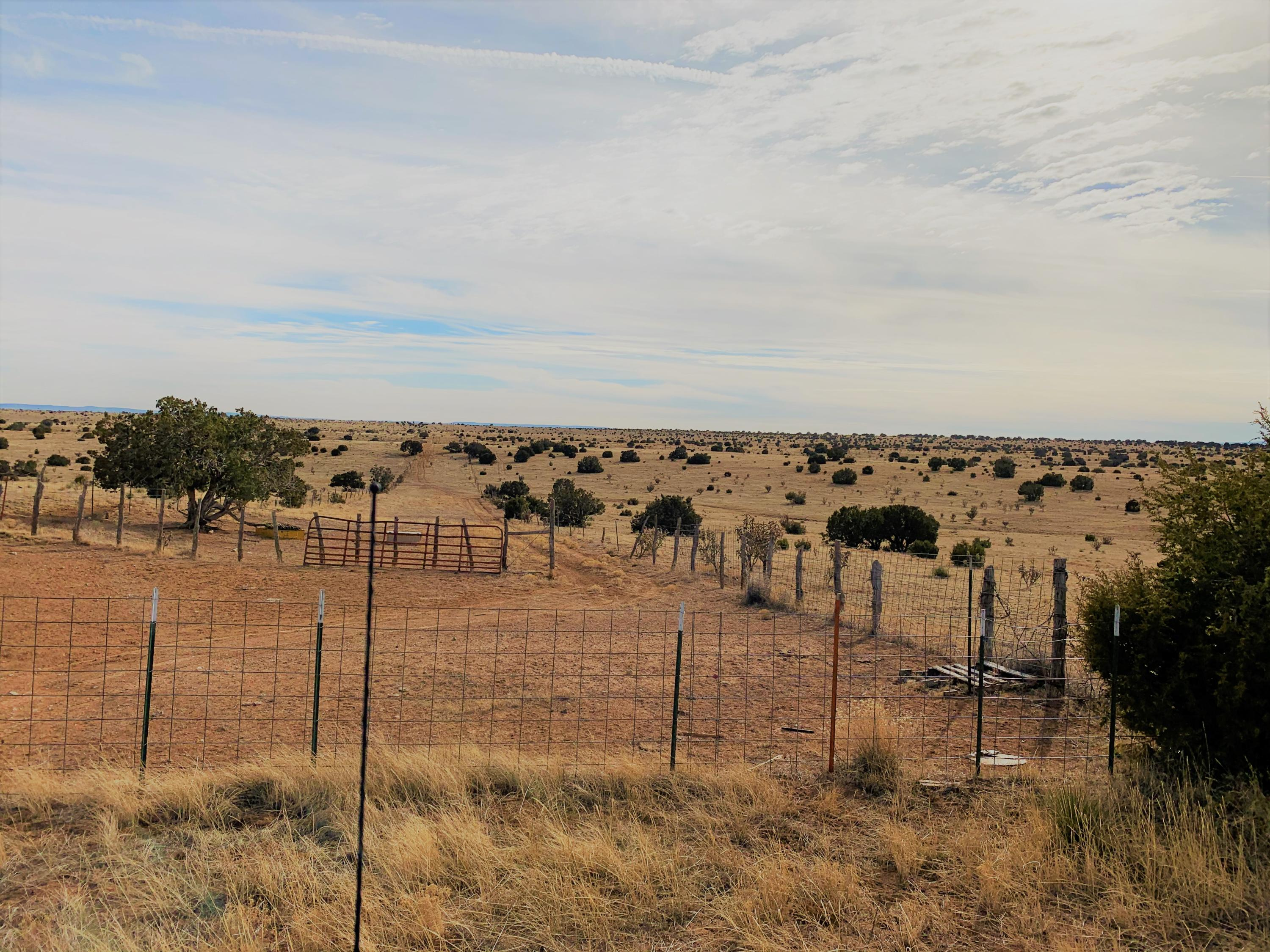 Luna Road Property Photo - Tajique, NM real estate listing