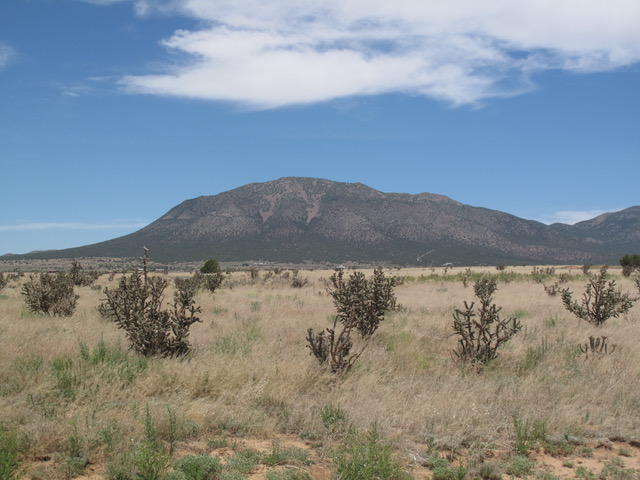 38 NORTHLAND MEADOWS Drive Property Photo - Edgewood, NM real estate listing