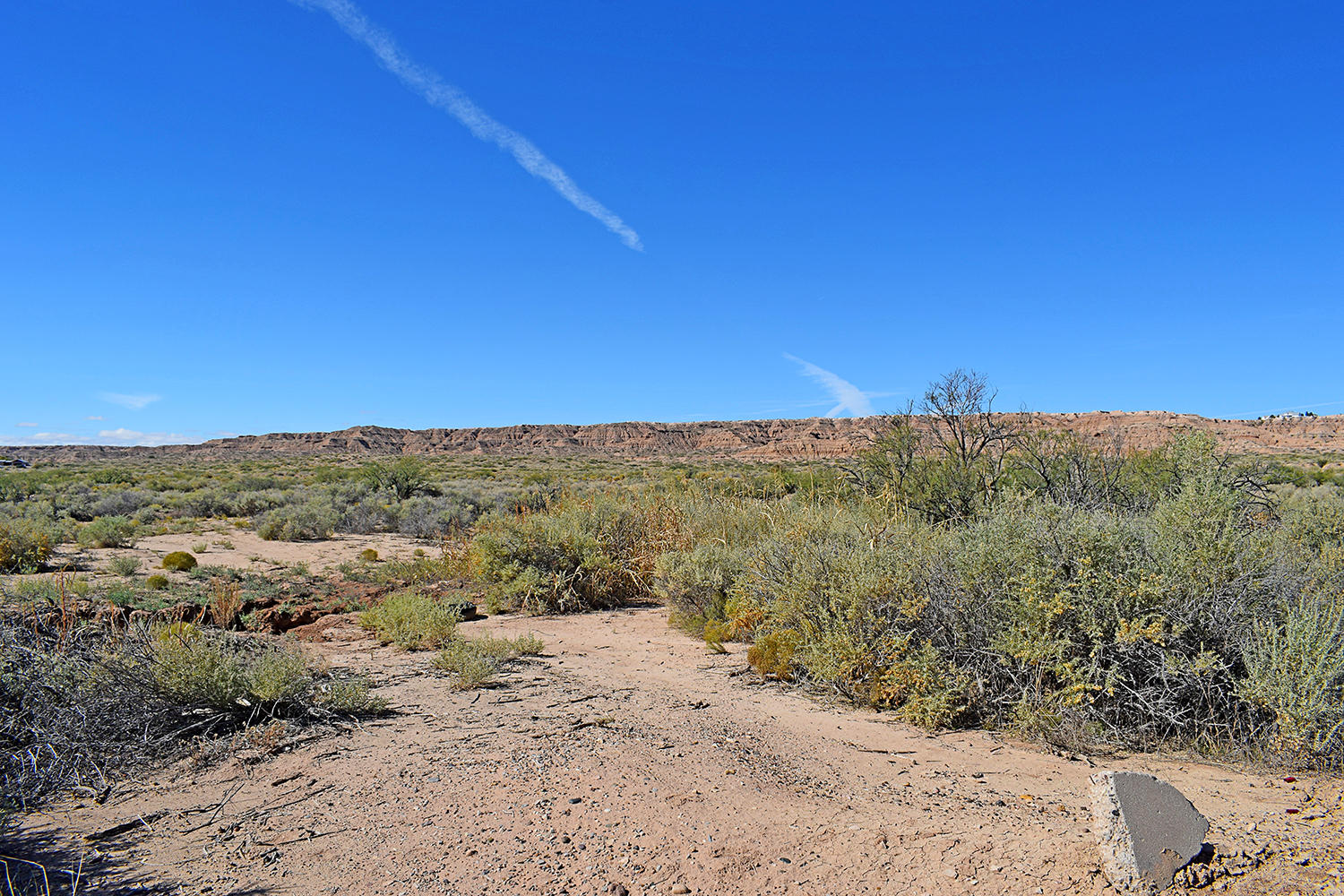 Tr 164D1 W Frontage Road Property Photo - Belen, NM real estate listing