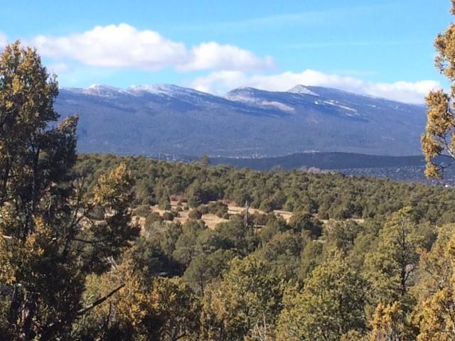88 Sedillo Canyon Road Property Photo