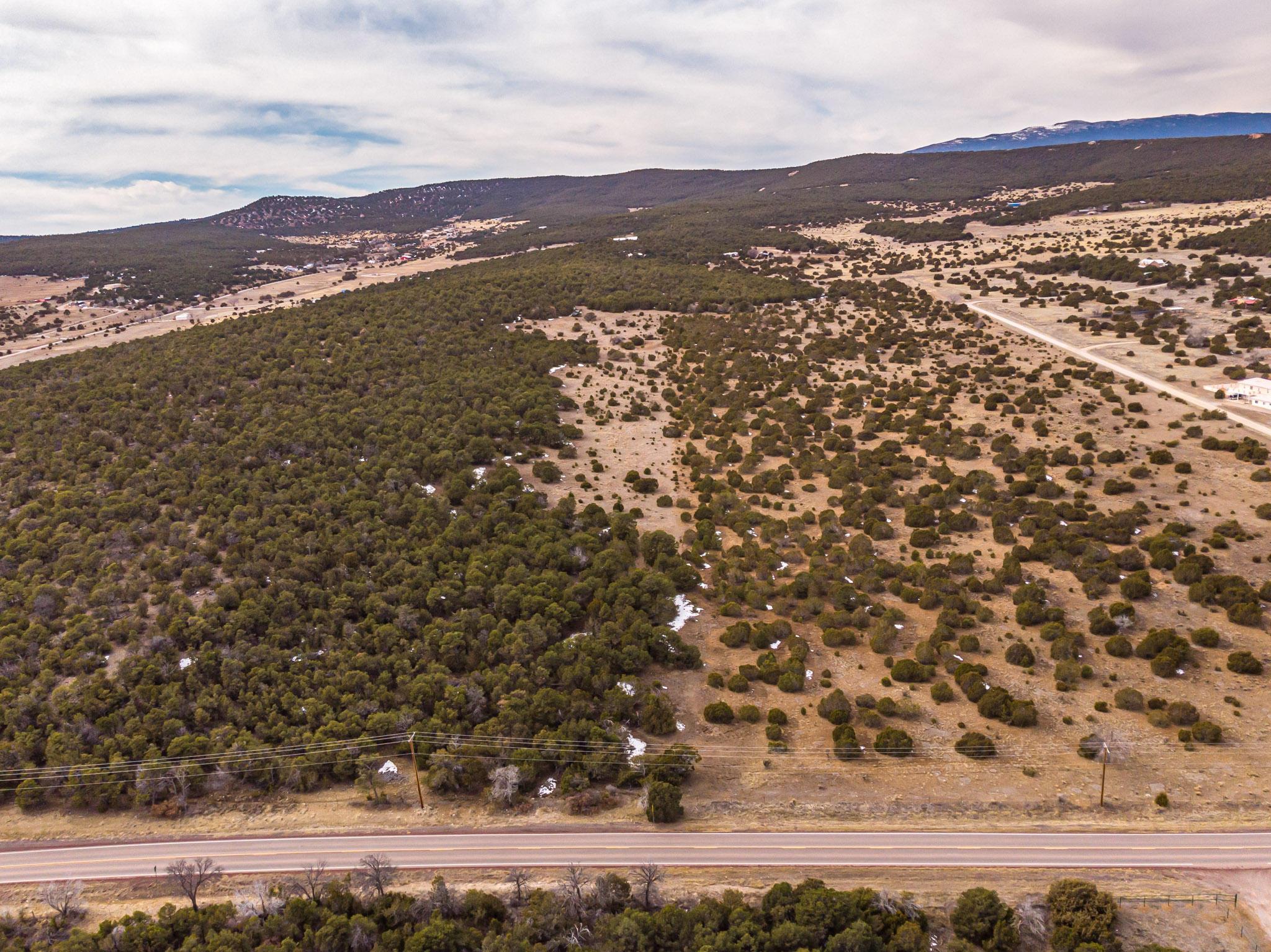 685 NM 217 Road Property Photo - Edgewood, NM real estate listing
