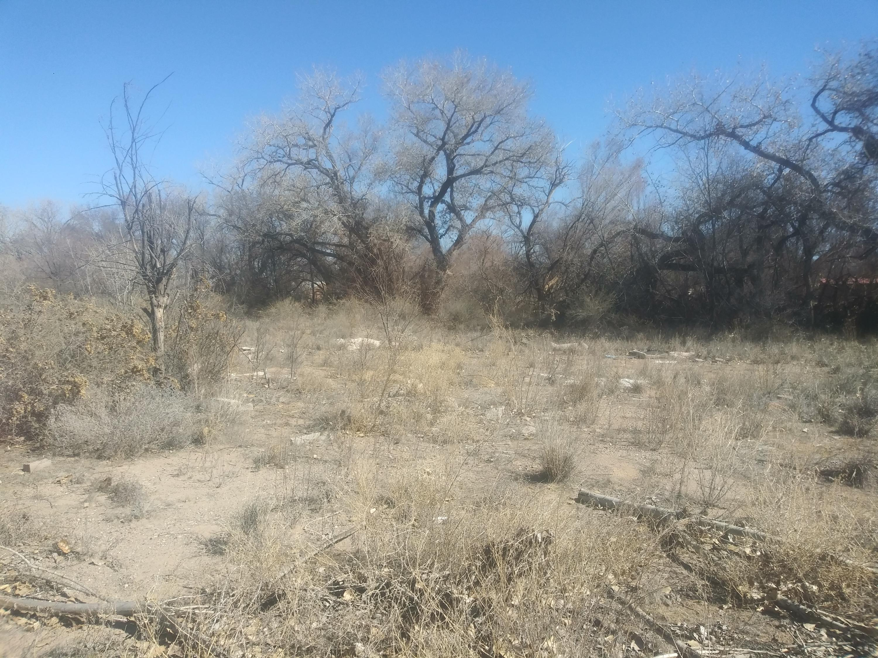 4928 moore Property Photo - Los Chavez, NM real estate listing