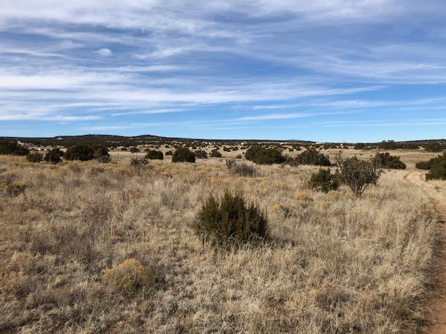 Cedar Lane Property Photo - Moriarty, NM real estate listing