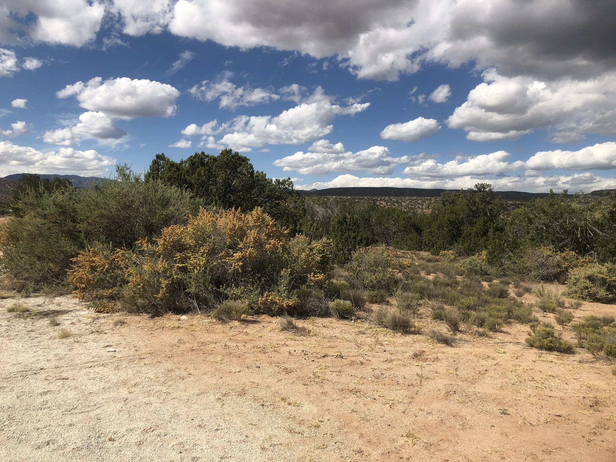 Serenata Road Road Property Photo - Ponderosa, NM real estate listing
