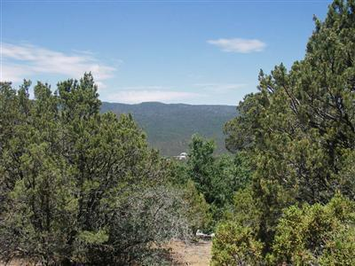 Lots 4 & 5 El Gallo Road Property Photo - Cedar Crest, NM real estate listing