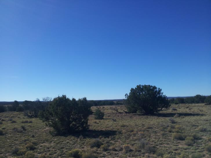 Pine Hill Road Property Photo - Fence Lake, NM real estate listing